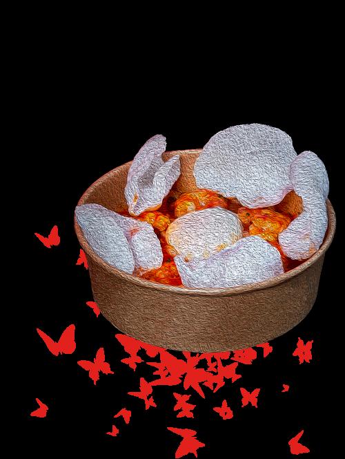 udon-mariposas-3.png